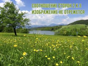 Печать фото МедиаГрад